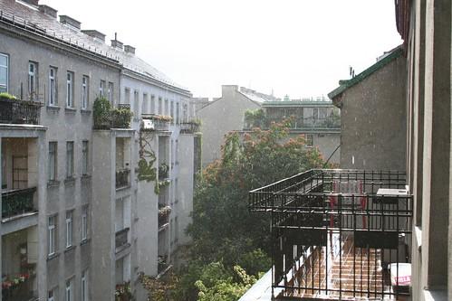 IMG_0486 Regen