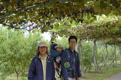 Kung Kung, me, and Daddy under the grapes