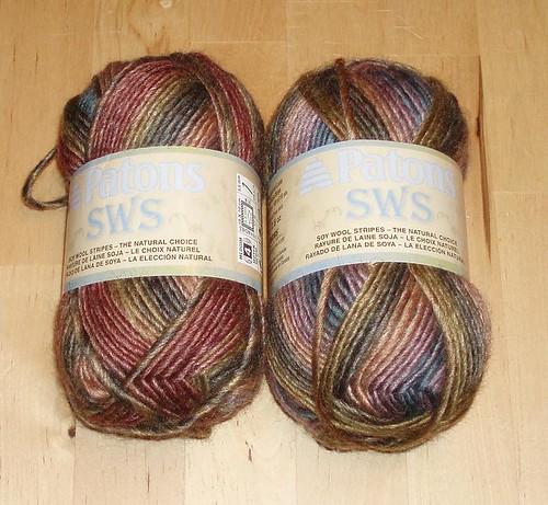 SWS 1