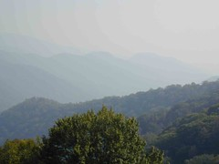 Great Smokey Mountains - on the drive back home
