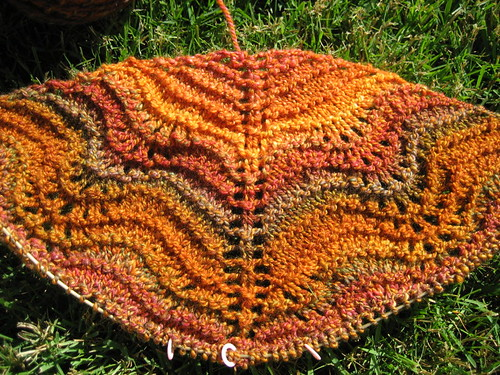 Autumn Waves Shawl - started