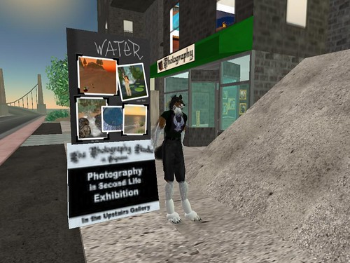 At The Photo Contest