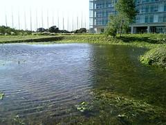 http://www.flickr.com/photos/laclef_yoshiyasu/266950200/
