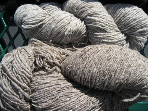 Morehouse Farm Merino