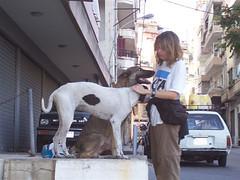 Voluntaria de PETA en Líbano