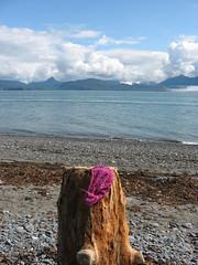 A beach in Alaska?