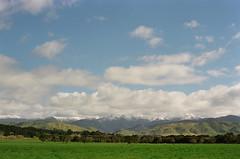 A Wairarapa view