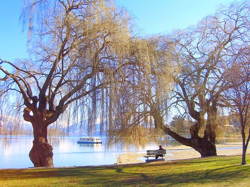 Lake Wanaka-13