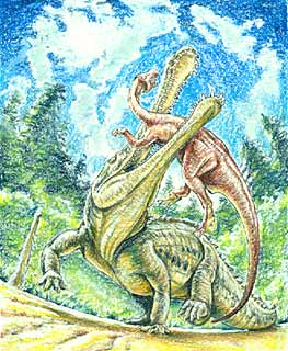 Sarcosuchus sketch