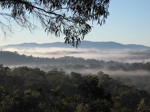 misty view2