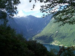 Looking onto the Fjord
