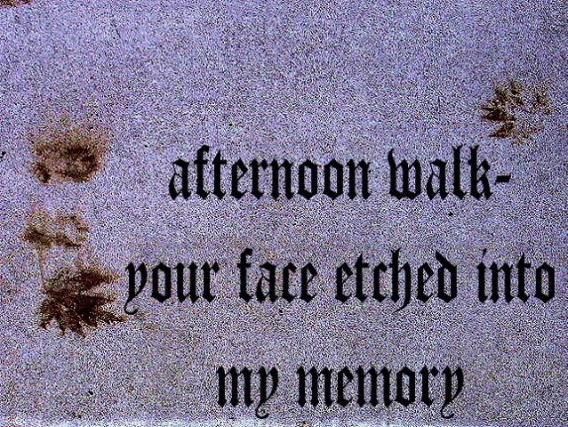 afternoonwalk2_00