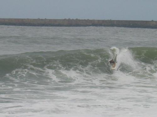 254178334 baad72ffaf Fotos del Festival de La Barre  Marketing Digital Surfing Agencia