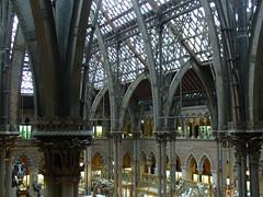 Musée d'Histoire Naturelle d'Oxford