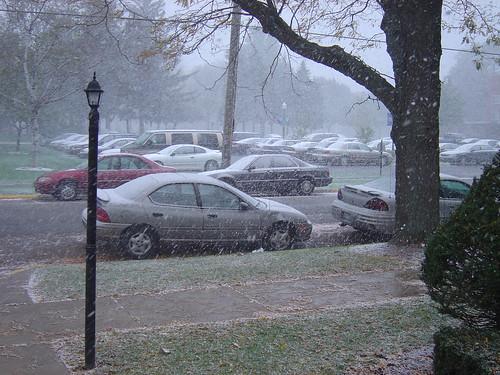 campus snowflurry