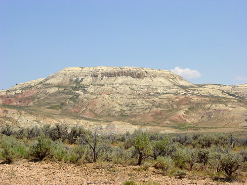 Fossil Butte 02