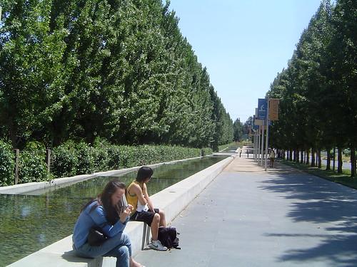 The Copia Walkway