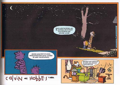 Calvin y el universo