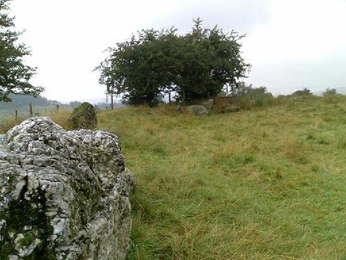 Castleruddery, II