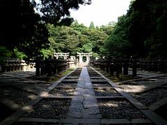 Tokoji Temple - 2