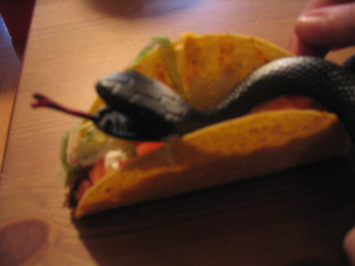 Snakes on a Taco