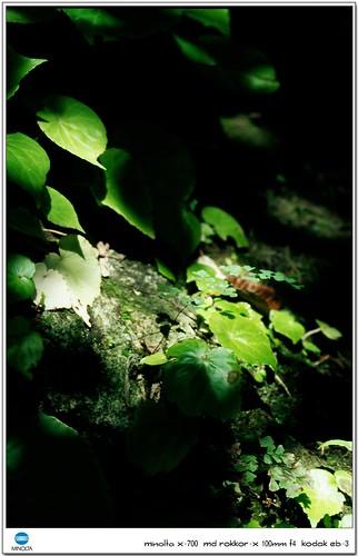 Taichung-20060913-33