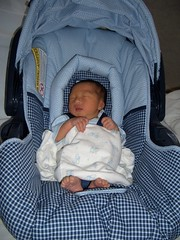 Newborn carseat