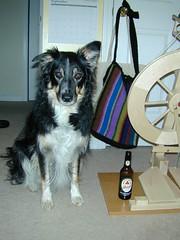 Hermione, The Watch Dog