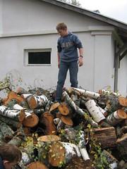 Ох, как много дров