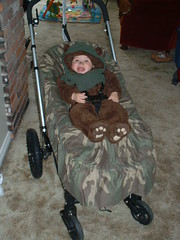 ewok in a bugaboo