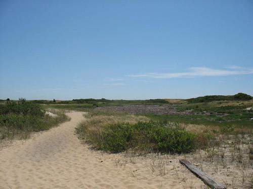 ptown dunes one