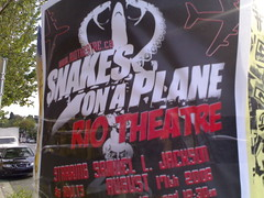 Snakes on a plane - Roland in Vancouver (033)
