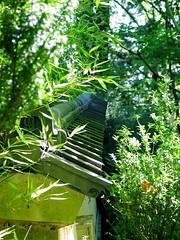 portland botanical gardens