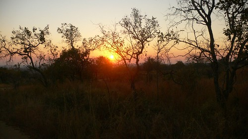 Sunrise in Kruger park
