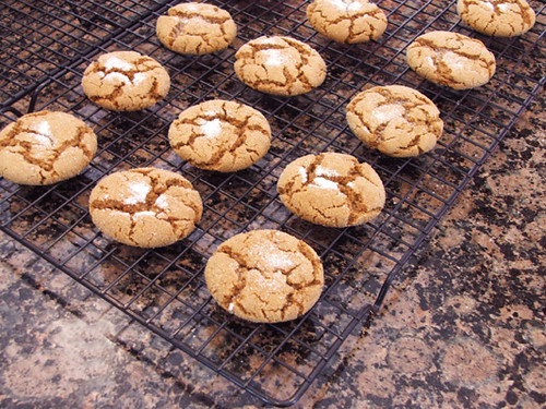 gingersnap cookies3