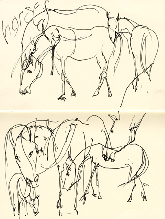 linehorses