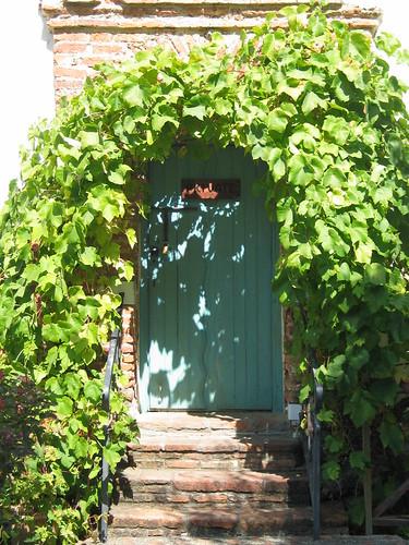 ivyed door