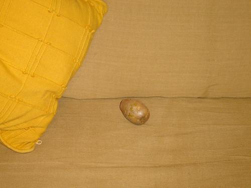 Lá em casa as batatas descansam no sofá!