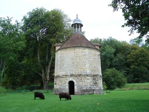 Abbaye de Mortemer BY 005