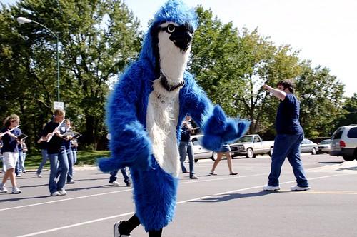 bluejay mascot