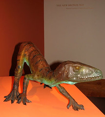 Hesperosuchus alias comida de Coelophysis