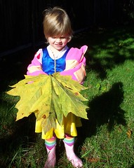 mega leaf