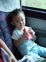 小球在車上喝牛奶