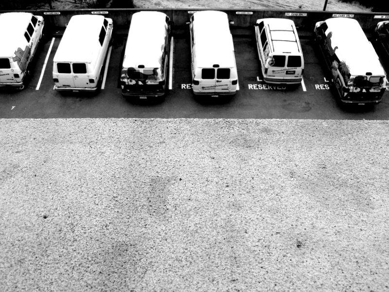 row of white vans