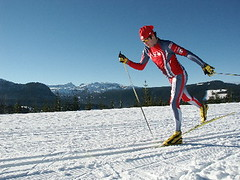 Classic X-Country skier