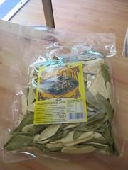 foglie di ulivo