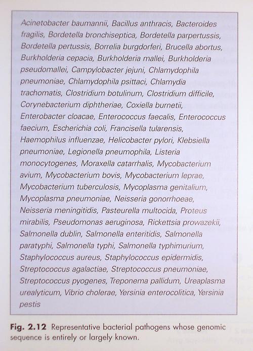 Mims, et al. Medical Microbiology, 3rd Ed. Figure 2.12