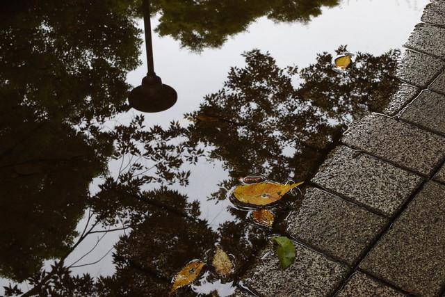 雨上がりの街角