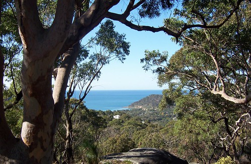 Umina Beach from The Rampart