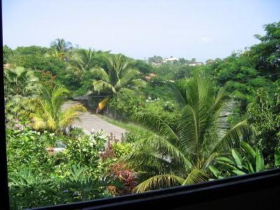 Vue de ma fenêtre - Martinique